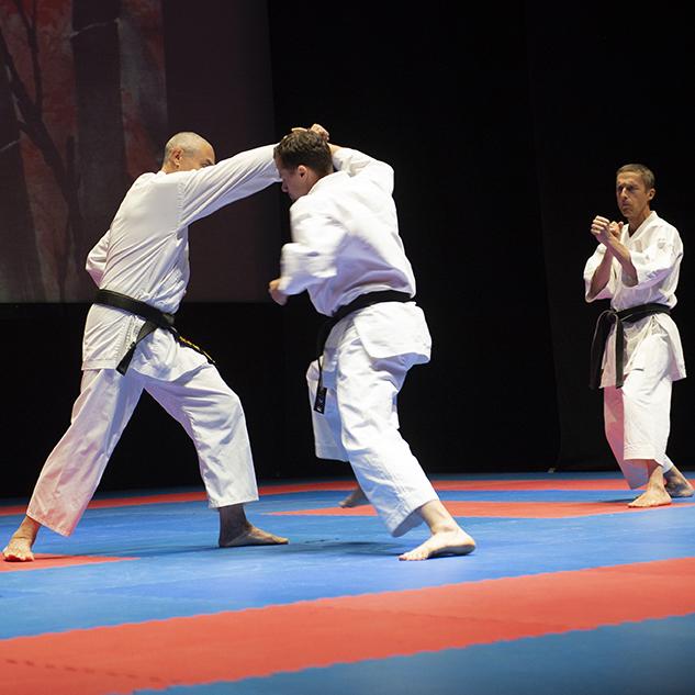 Amatori Karate